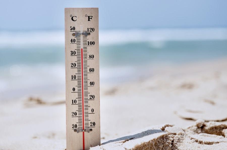 heat stroke in dogs